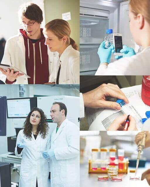 Zusammenarbeit mit labfolder