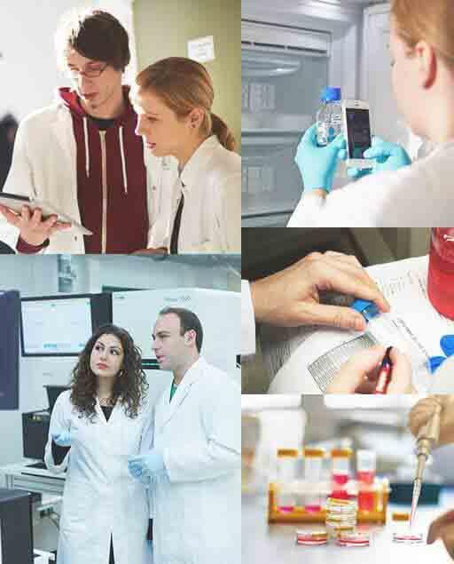 labfolder laboratory notebook collaboration