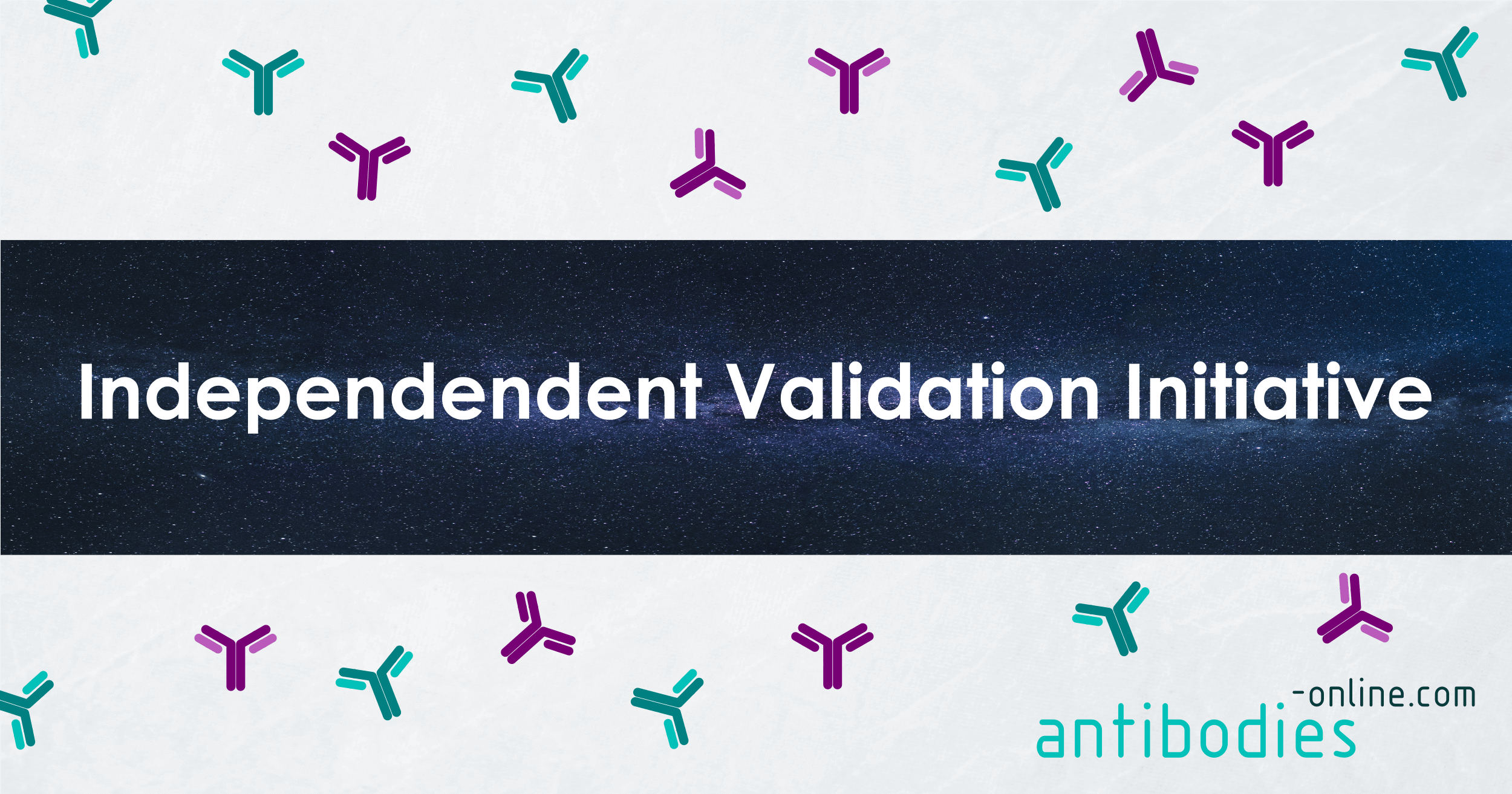independent-validation-initiative